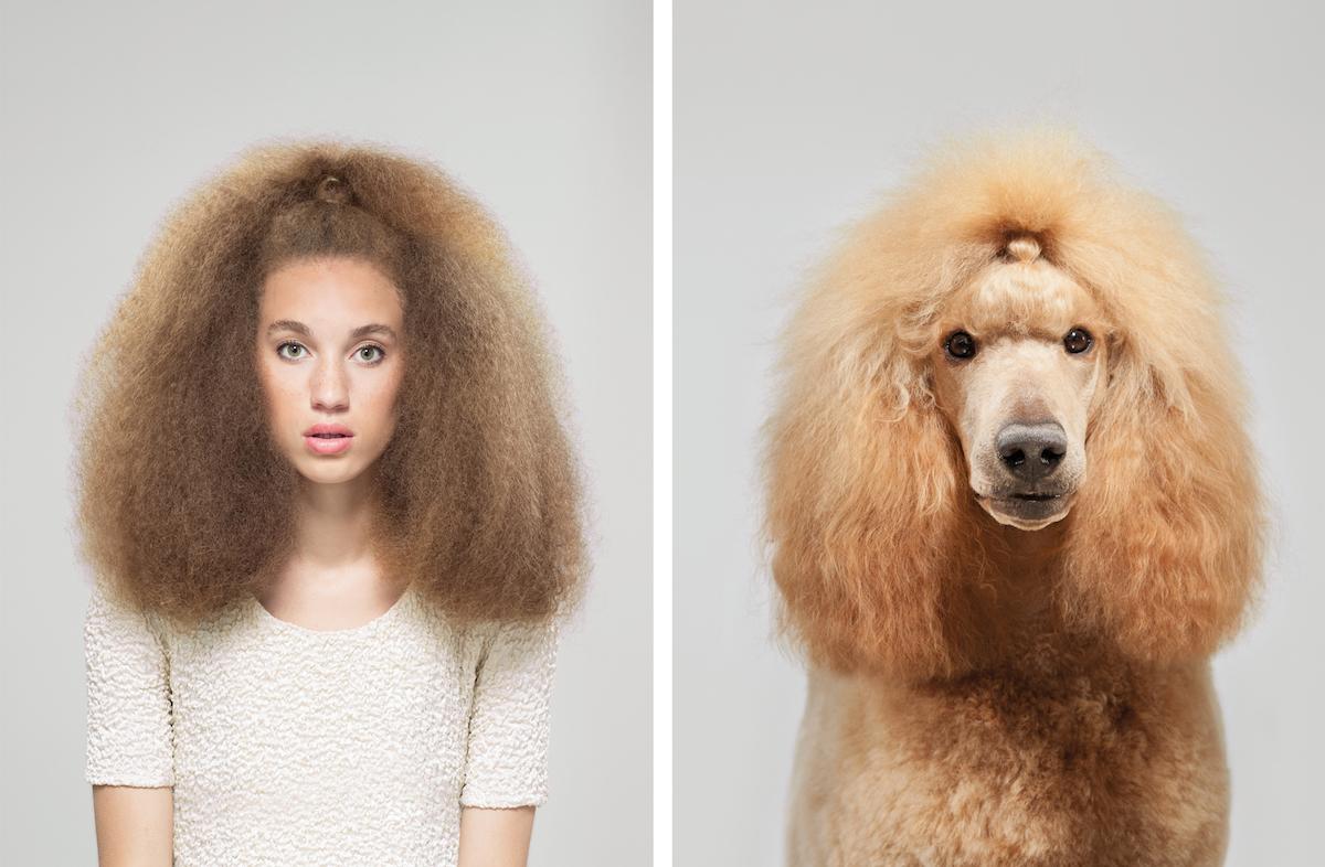 Сходства собак и их владельцев в забавной фотосерии Джеррарда Гетингса