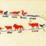 Продолжительность жизни различных видов животных (инфографика)
