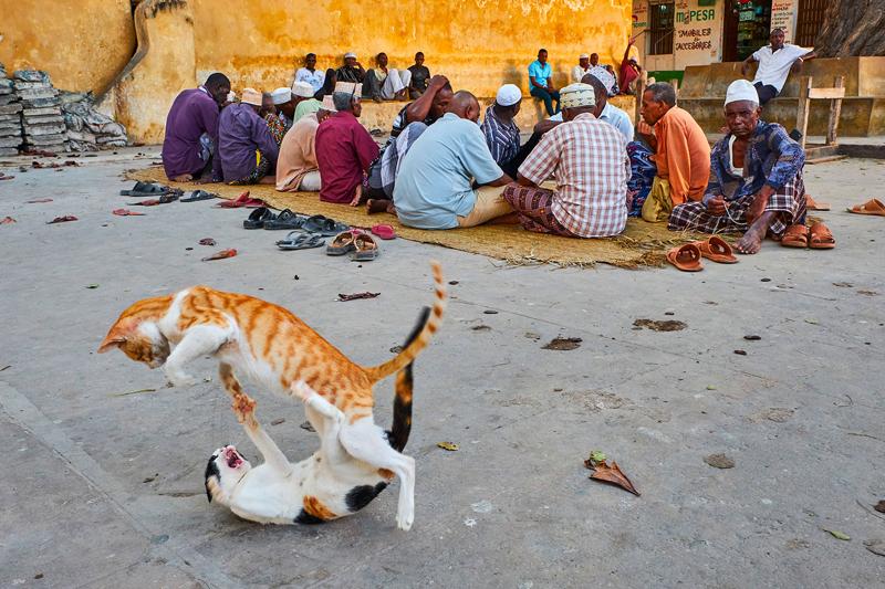 Ламу, Кения