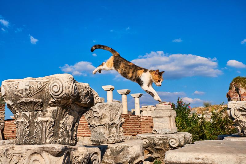 Эфес, Турция