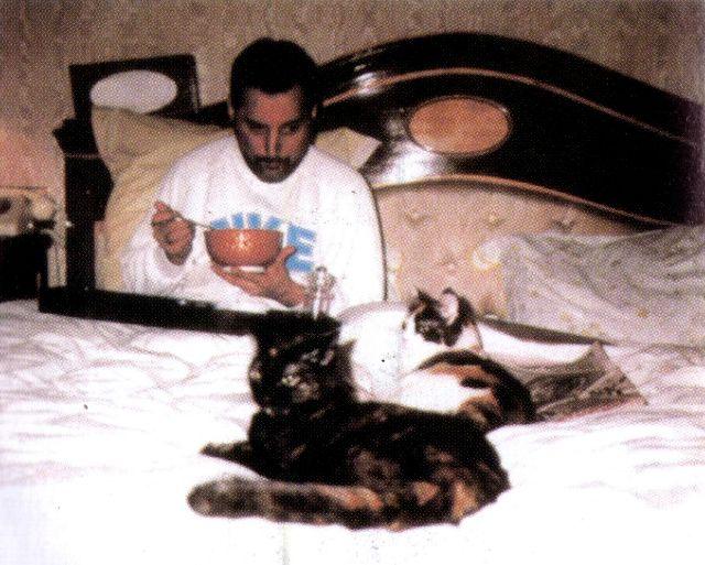 Очаровательное фотографии Фредди Меркьюри с его любимыми кошками