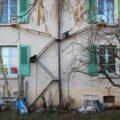 Лестницы для кошек: как жители Швейцарии балуют своих питомцев