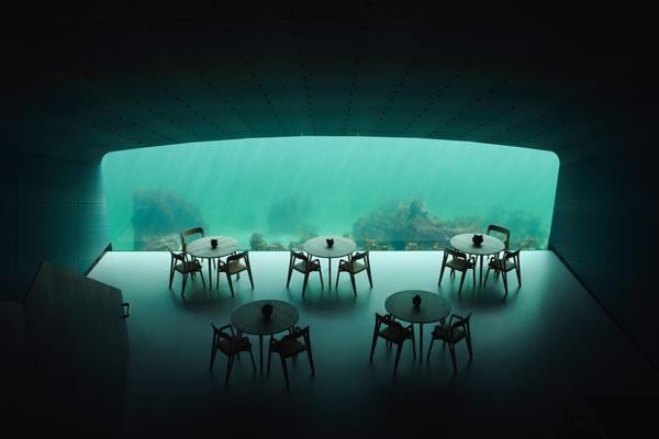 Under — новый подводный ресторан в Норвегии, открывающий взгляд на чудеса под водой
