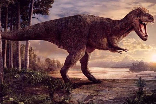 20 фактов о тираннозавре — самом грозном хищнике на Земле