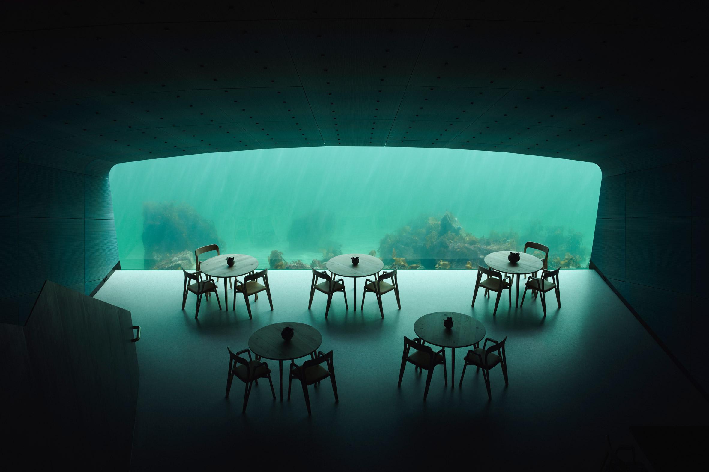 Under - новый подводный ресторан в Норвегии, открывающий взгляд на чудеса под водой