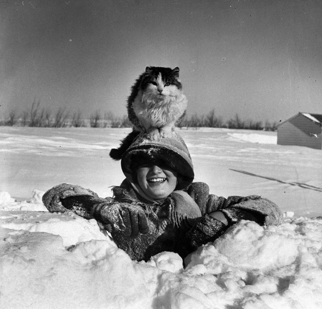 10-летняя Шэрон Адамс со своим котом, 1952 год