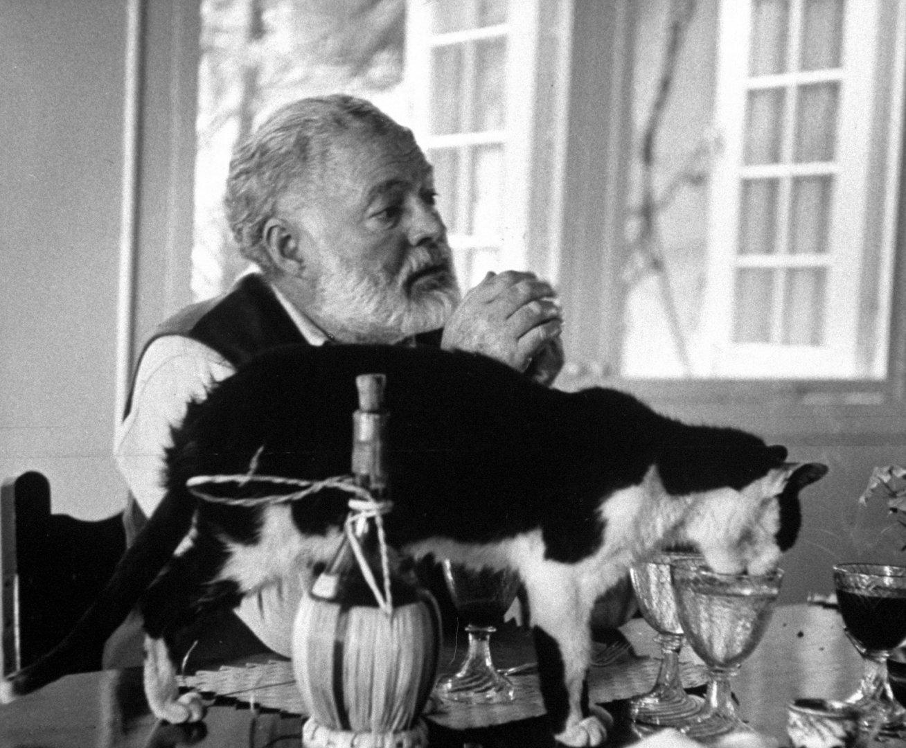 Эрнест Хемингуэй с одной из своих кошек, 1959 год