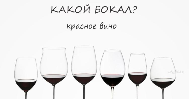 В каких бокалах должны подаваться различные сорта вин (инфографика)