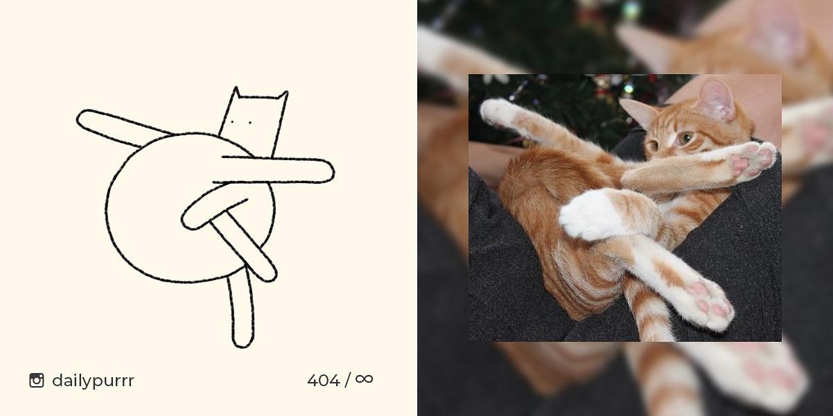 Коты с натуры: художник рисует котов, сочетая простоту и юмор