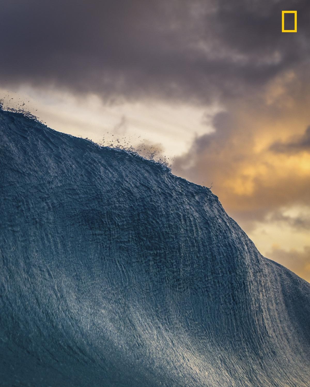 2-е место в категории «Природа». Фотограф Danny Sepkowski