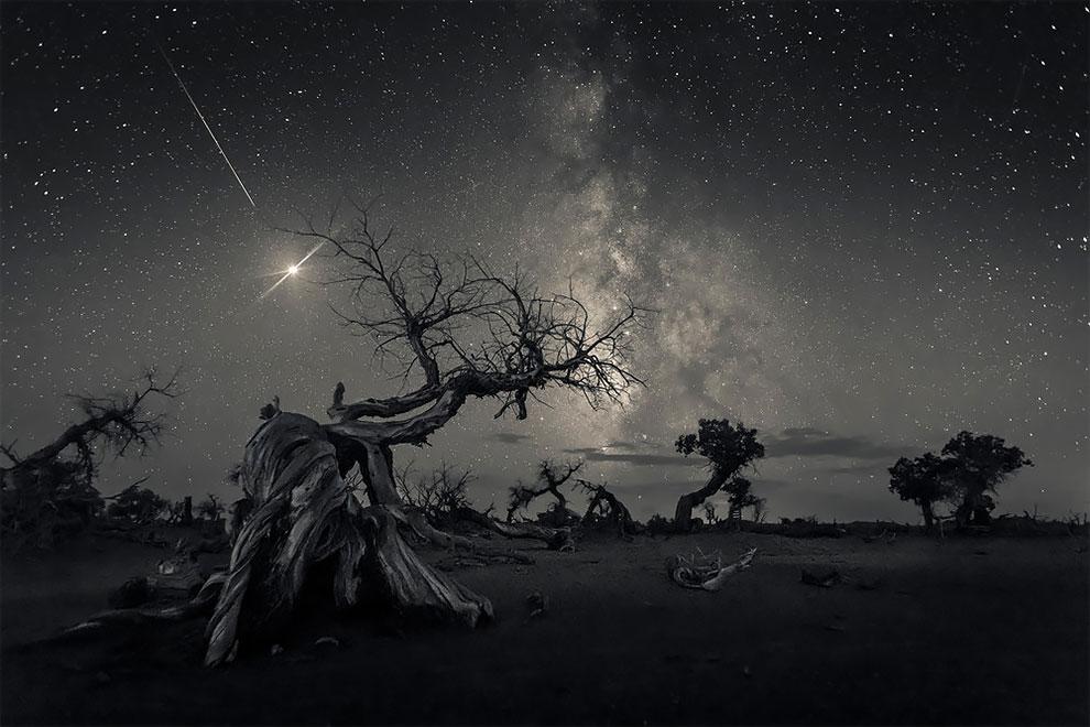 1-е место в номинации «Ночное небо». Фотограф Wang Zheng