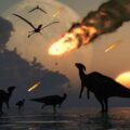 Краткая история пяти крупнейших массовых вымираний на Земле