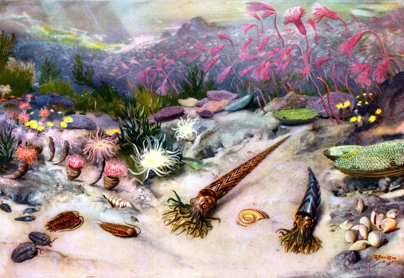 Ордовикско-силурийское вымирание, около 450—440 млн лет назад