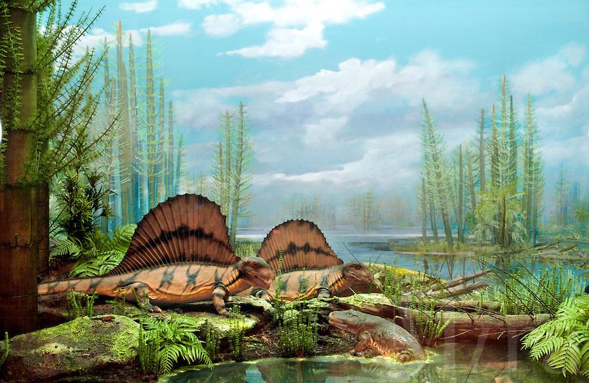 «Великое» пермское вымирание, около 252 млн лет назад