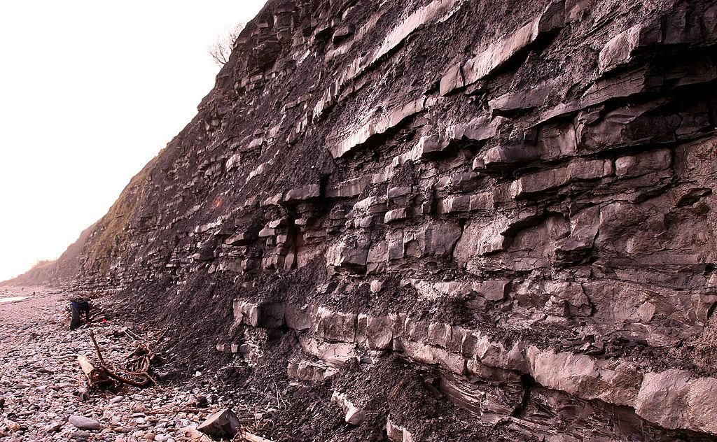 Скалы возле Лайм-Реджис, где Мэри Эннинг делала находки
