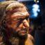 Насколько умными были неандертальцы?