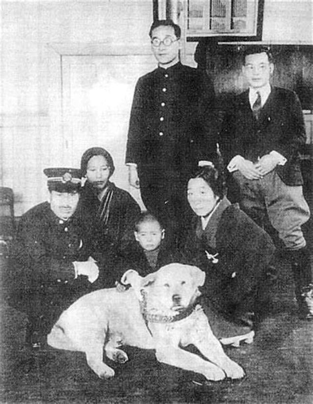 Хатико: редкие фотографии самой верной собаки в мире