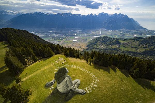 Массивная картина площадью 3000 квадратных метров на траве