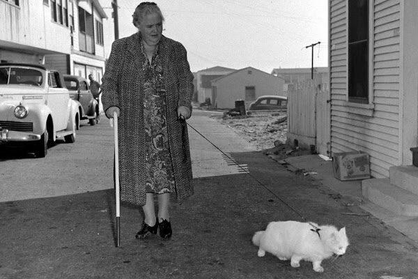 Знакомьтесь, кошка-поводырь по имени Бэйби и его хозяйка, 1947 год