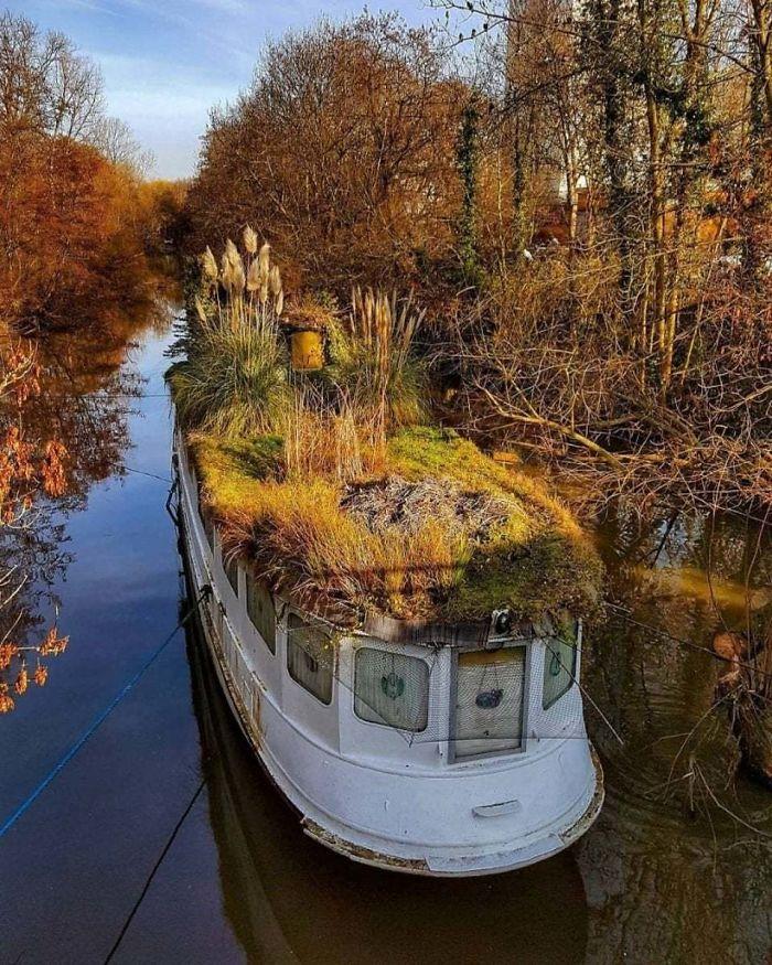 Что происходит, когда природа берет верх - эта лодка на реке во Франкфурте, Германия