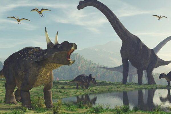 Эта интерактивная карта показывает, какие динозавры бродили по вашему городу миллионы лет назад