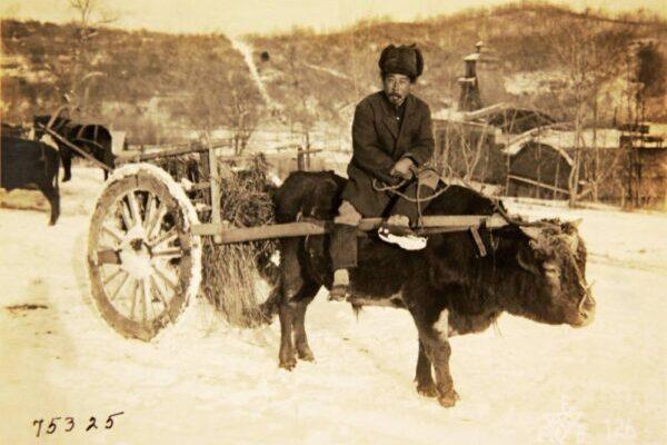 Редкие фотографии повседневной жизни этнических корейцев на территории бывшего СССР в начале 20 века