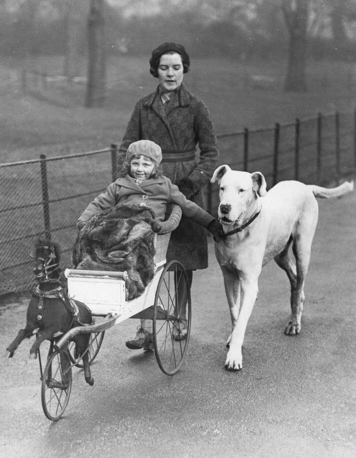 1932 год: мама гуляет со своей маленькой дочкой и их собакой в Гайд-парке, Лондон