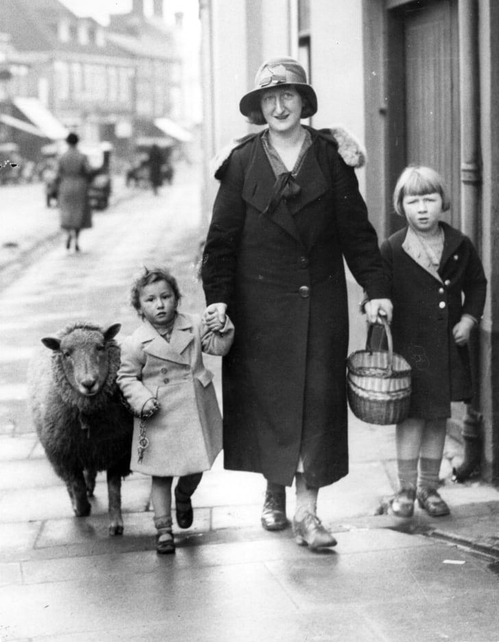 1936 год: мама со своими детьми и их домашней овцой, Олтон, Хэмпшир, Англия