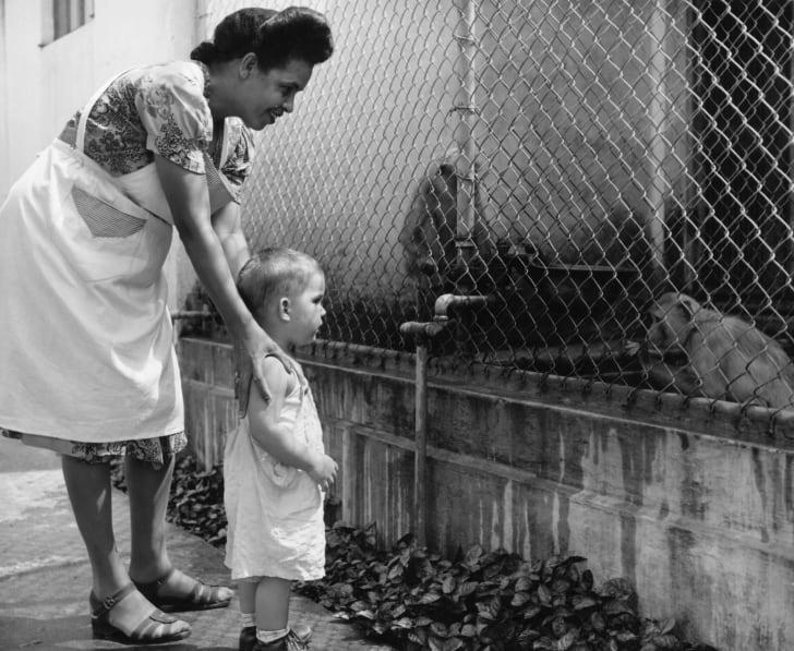 1950 год: мать и дитя смотрят в клетку с обезьянами в зоопарке Пуэрто-Рико
