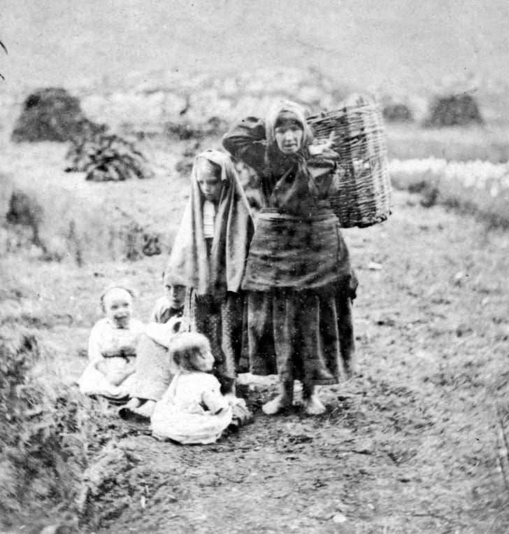 1890 год: сбор торфа в сельской местности Килларни, графство Керри, Ирландия