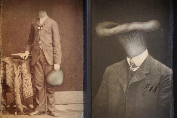 Династия грибов в причудливых изображениях от Яны Палецковой