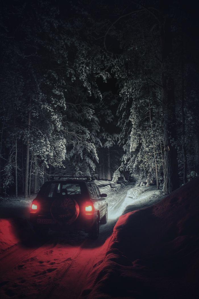 Зимний лес, похожий на какую-то историю Стивена Кинга