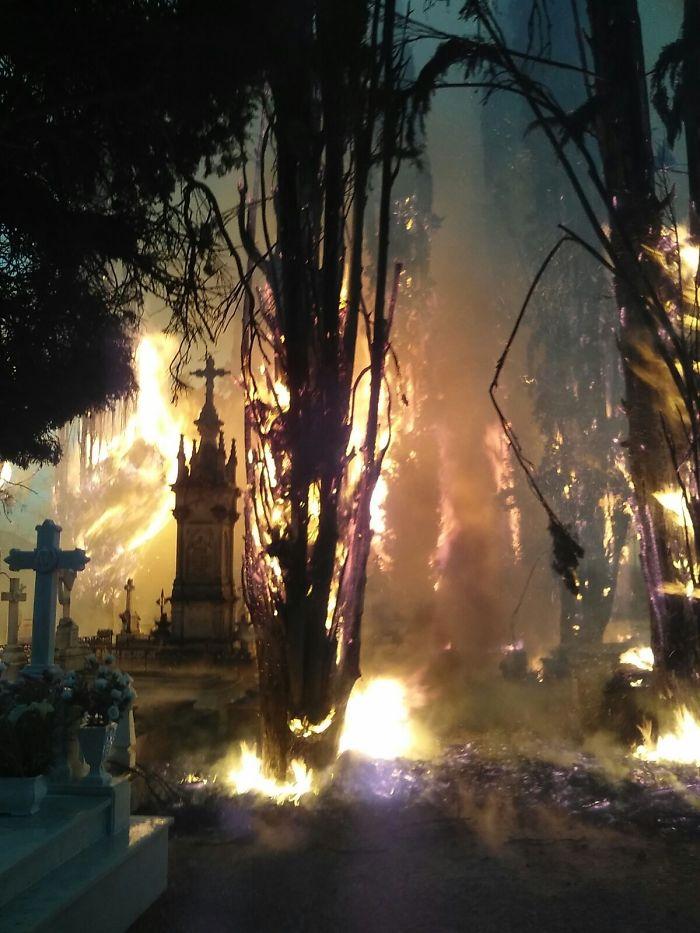 Пожар на кладбище выглядит как кульминация фильма ужасов