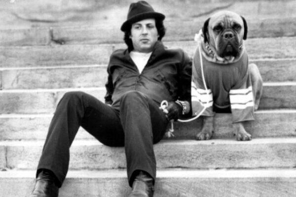 В 1971 году Сильвестр Сталлоне продал свою собаку за $40, а затем выкупил обратно за $15 000