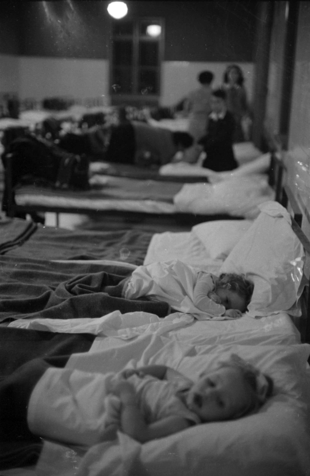 Иммигранты на острове Эллис, 1950 год
