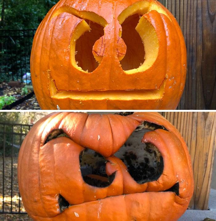 Гниющая тыква для Хэллоуина