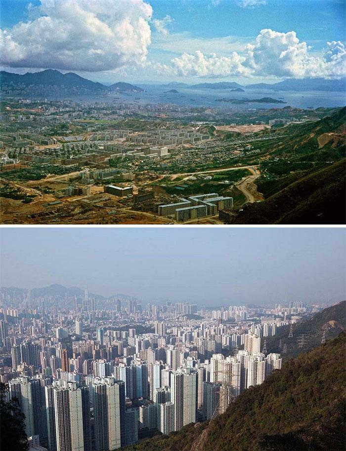 Полуостров Коулун, Гонконг. Сравнение 1964 и 2016 годов