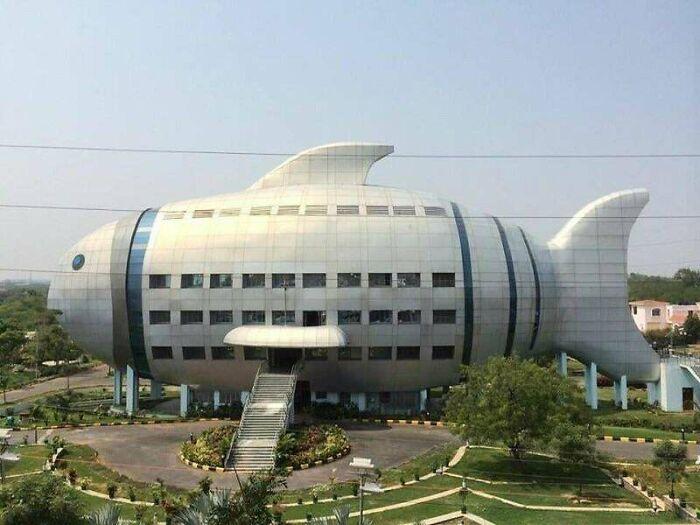 Департамент рыболовства в Хайдарабаде, Индия