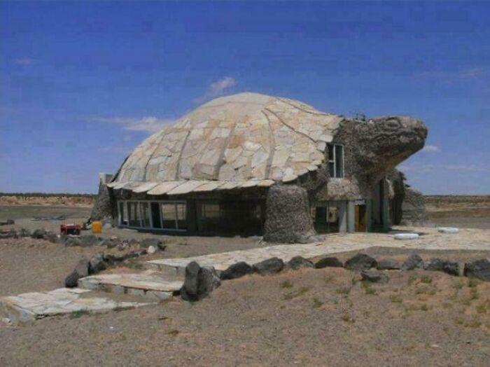 Здание-черепаха