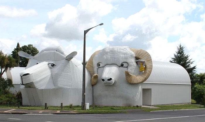 Здания-овцы, Тирау, Вайкато, Новая Зеландия
