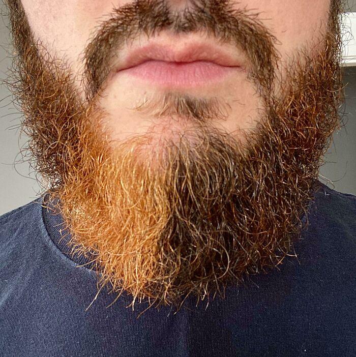 Борода на 1/4 оранжевого цвета