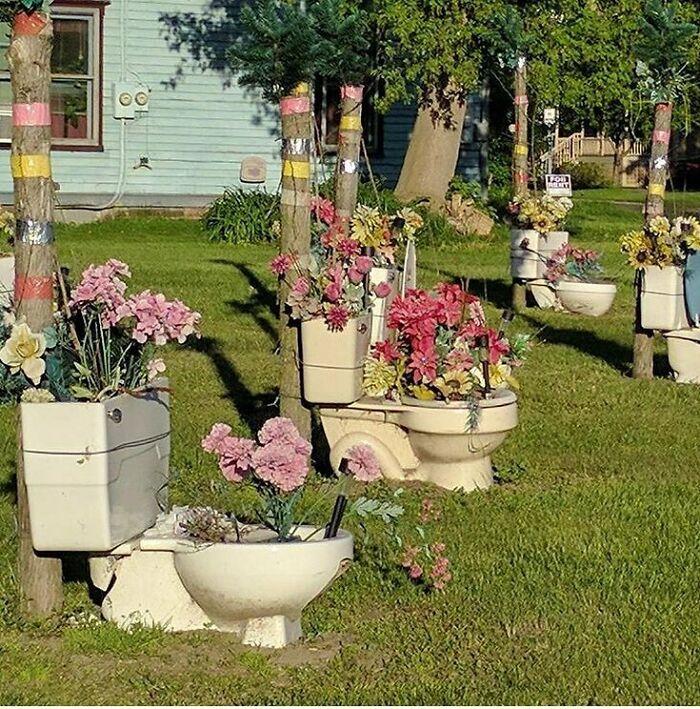 Странные вещи в садах