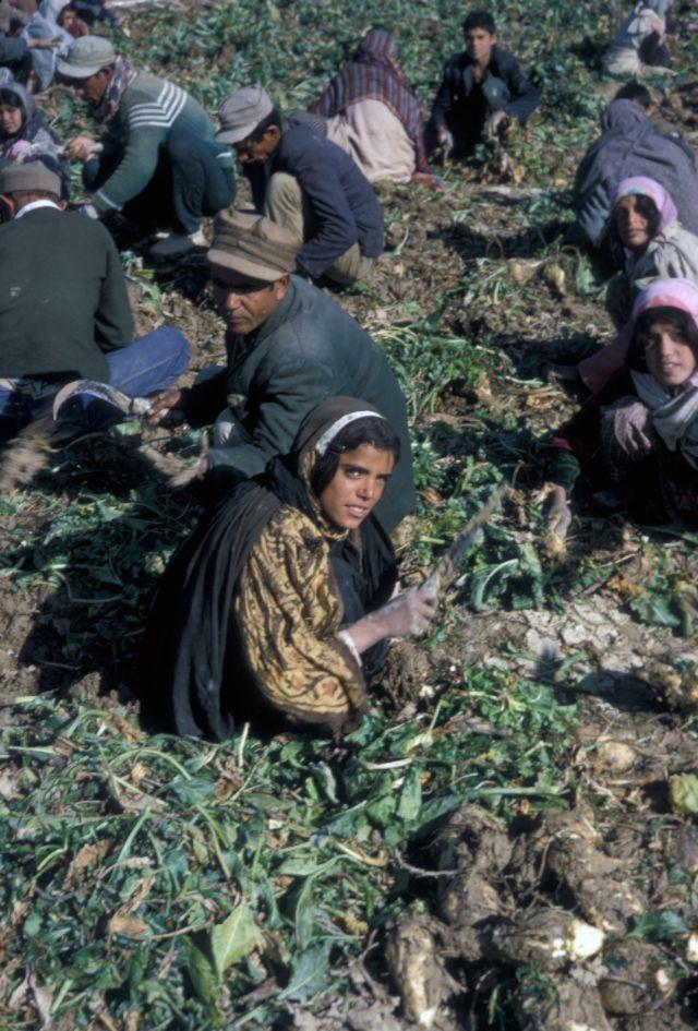 Тегеран, Иран, в 1967 году
