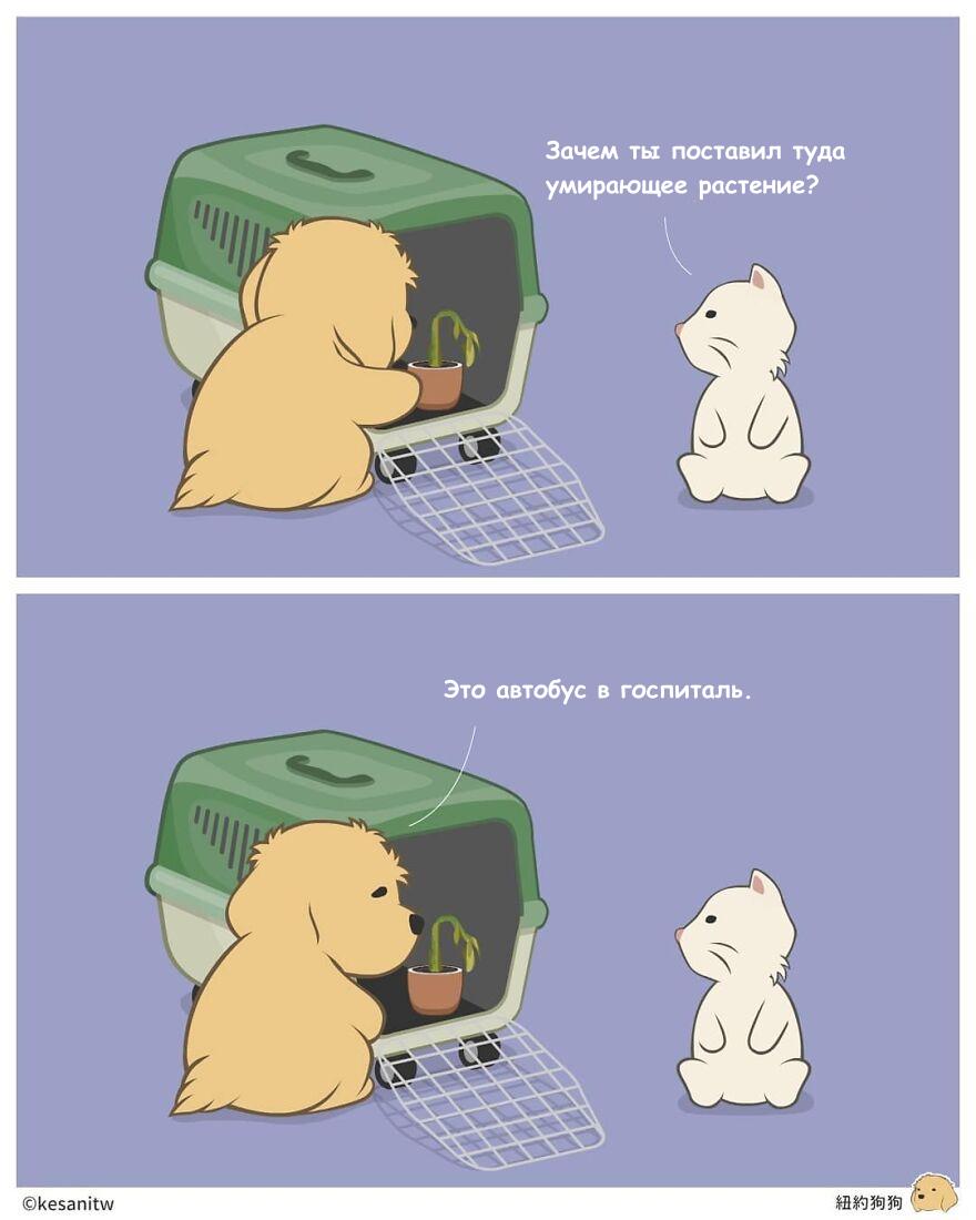 Что делали бы животные, если бы были людьми