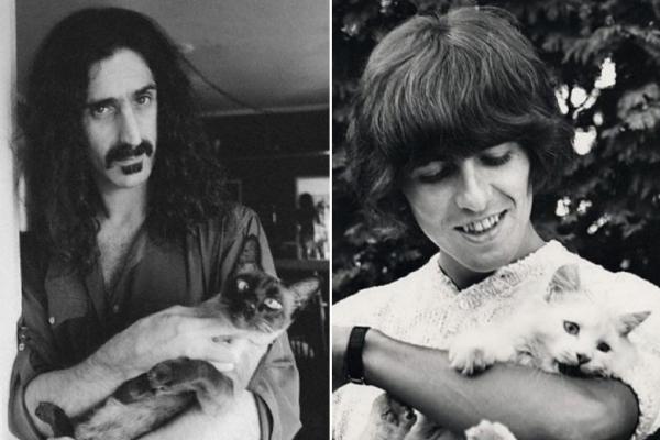 Очаровательные старые фотографии рок-звёзд, позирующих со своими котиками