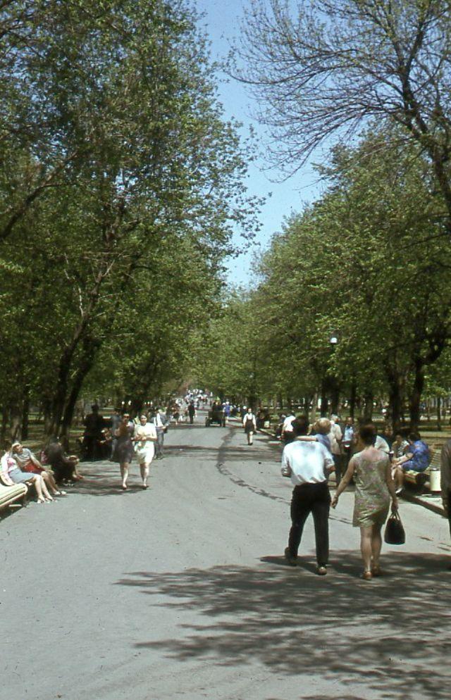 Московский парк, 1971 год